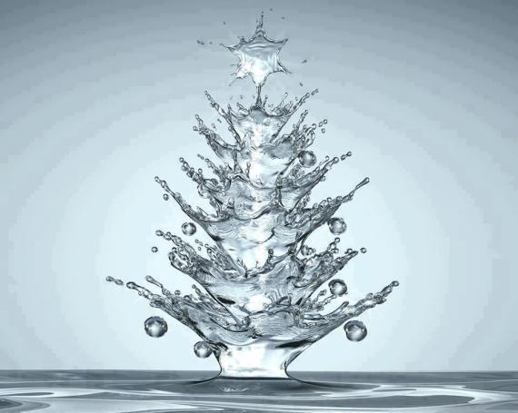 albero d'acqua