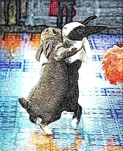 Conigli che ballano per le strade di Govinia- Elaborazione grafica di Carlo Menzinger