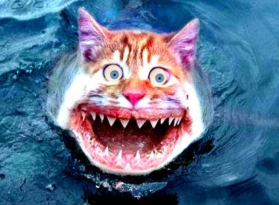 Uno snurtz (gatto di lago) – rielaborazione grafica di Carlo Menzinger