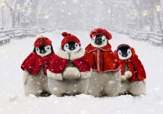 Pinguini natalizi