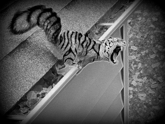Scoiattolo-tigre di Govinia - elaborazione grafica di Carlo Menzinger